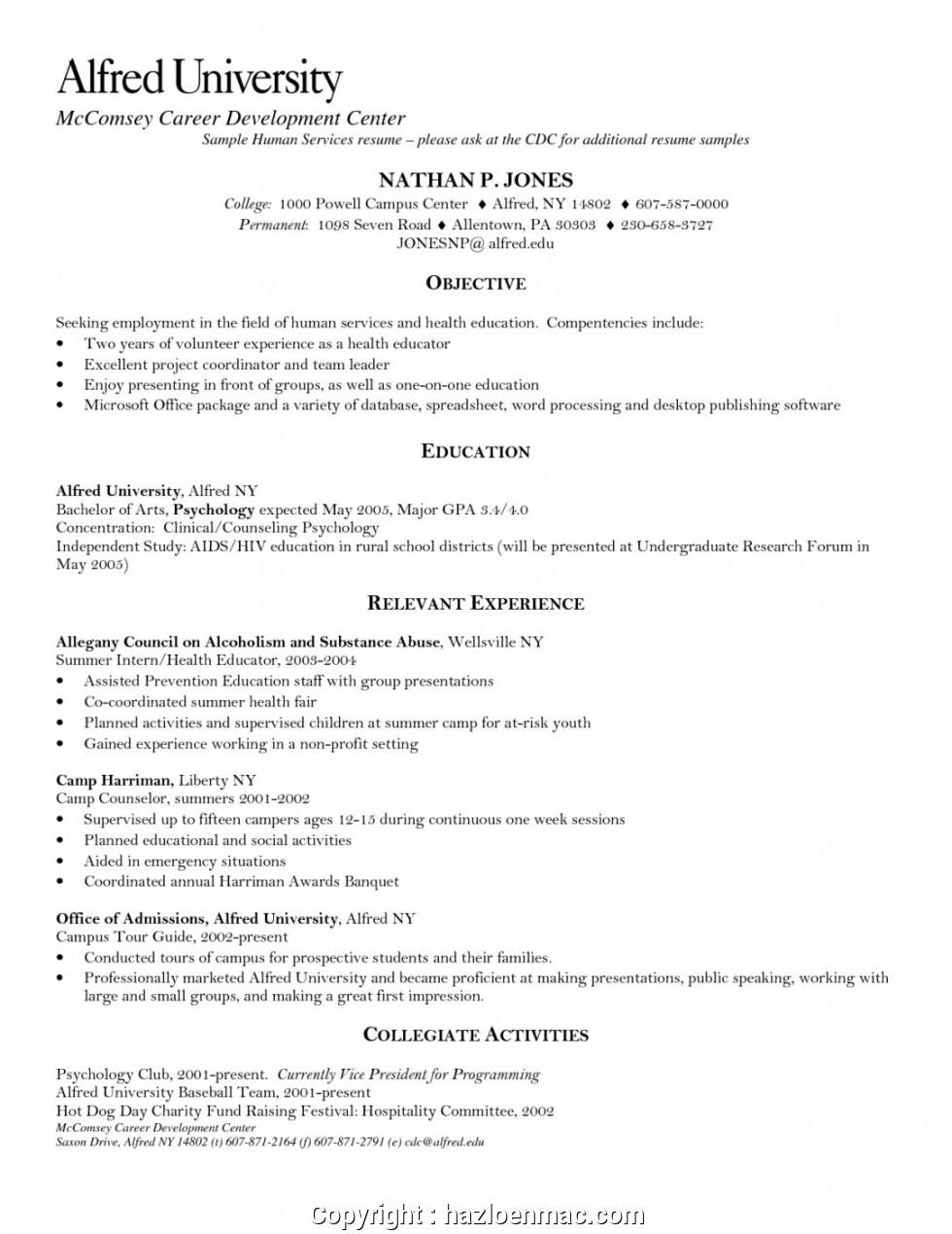 human services resume objective examples