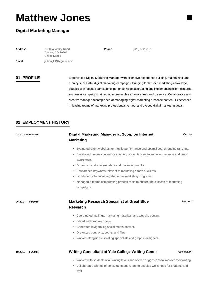 Sample Resume for Digital Marketing Executive Digital Marketing Manager Resume Examples & Writing Tips 2021 (free