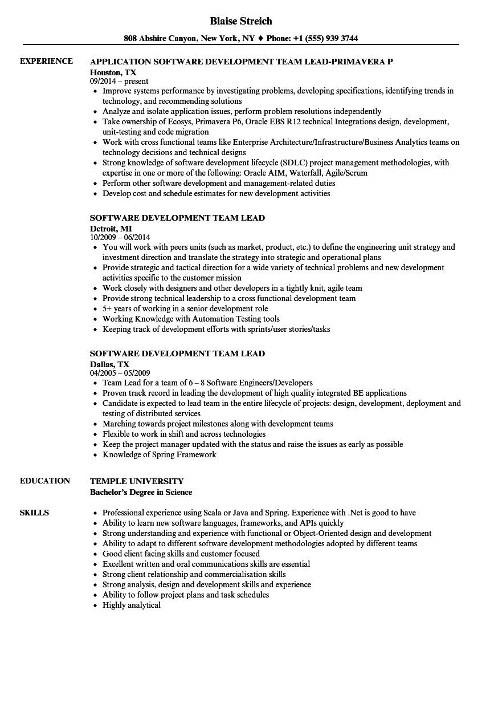 software development team lead resume sample