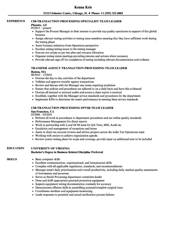 team leader processing resume sample