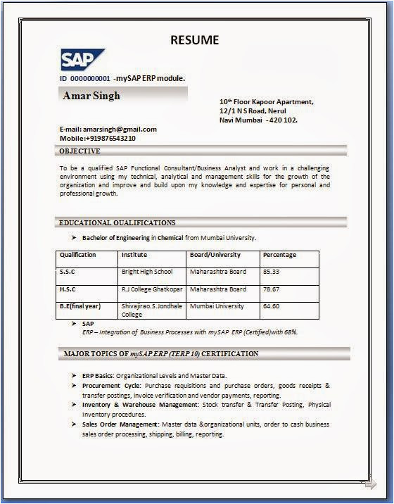 2 year experience resume format in word