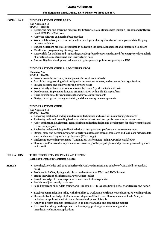 Sample Resume for Big Data Developer Big Data Developer Resume Samples