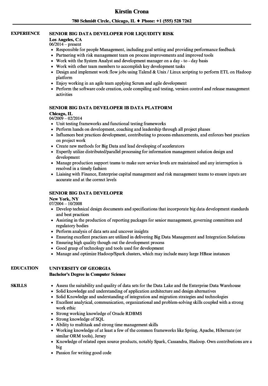 senior big data developer resume sample