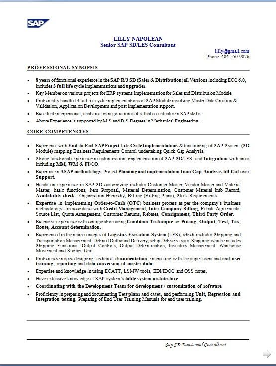 sap sd analyst sample resume format in
