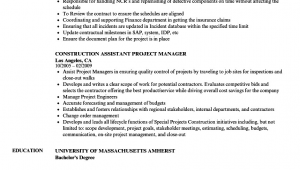 Assistant Construction Project Manager Resume Samples Construction assistant Project Manager Resume Samples