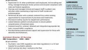 Assistant Director Of Nursing Resume Sample assistant Director Nursing Resume Samples
