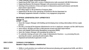 Bachelor Degree In Business Administration Resume Sample How to Write Bachelor Business Administration Resume