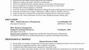 Entry Level Human Resources Resume Sample 23 Human Resource Resume Objective Examples In 2020