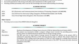 Entry Level Network Administrator Resume Sample √ 20 Entry Level Network Administrator Resume