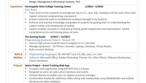 Entry Level software Developer Resume Sample Entry Level software Developer Resume Resumes