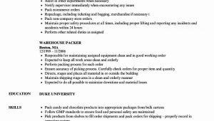 Entry Level Warehouse Worker Resume Samples Entry Level Warehouse Resume Lovely Warehouse Packer Resume …