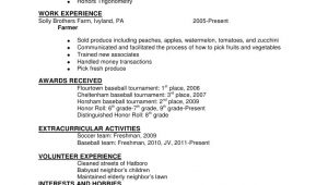 Expected to Graduate In Resume Sample Expected to Graduate In Resume Sample