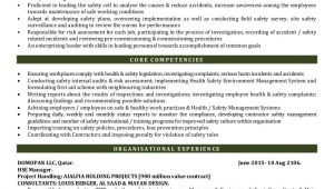 Health and Safety Manager Resume Sample Hse Manager Cv