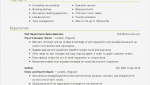 Home Depot Sales associate Resume Sample Sales associate Resume Examples It Resume Examples Karate Do Nrw …