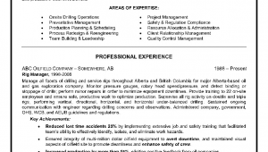 Oil and Gas Consultant Resume Sample Example Of A Oilfield Consultant Resume Sample