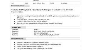 Oracle Dba Fresher Resume Sample Doc 45 Fresher Resume Templates Pdf Doc Free Premium