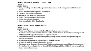 Oracle Financial Functional Consultant Sample Resume oracle Functional Consultant Resume Samples