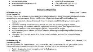 Professional Summary Resume Sample for Accountant Accounting, Auditing, & Bookkeeping Resume Samples Professional …