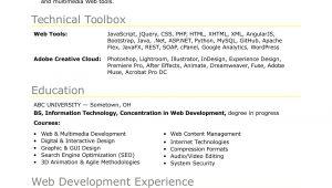 Resume Samples for Web Developer Fresher Sample Resume for An Entry-level It Developer Monster.com