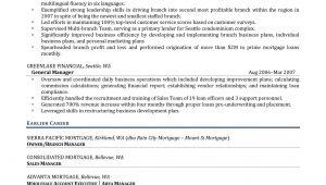 Sample Resume Executive Director Non Profit organization Executive Director Resume Examples