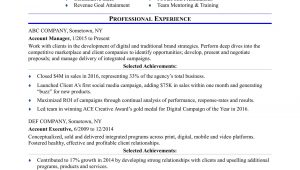 Sample Resume for Account Executive Position Sample Resume for An Advertising Account Executive