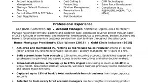 Sample Resume for Account Manager Position Account Manager Resume Sample