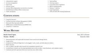 Sample Resume for Border Patrol Agent Border Patrol Agent Resume Builder & Examples Rocket Resume