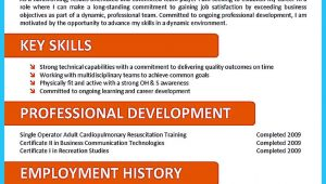 Sample Resume for Call Center Agent without Experience Impressing the Recruiters with Flawless Call Center Resume