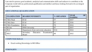 Sample Resume for Cost Accountant In India Cost Accountant Resume Sample/example/template/summary – Resume …