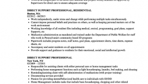 Sample Resume for Direct Support Professional Direct Support Professional Job Description for Resume