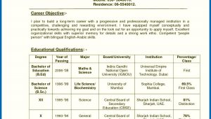 Sample Resume for English Teachers In India Resume Of A Teacher India Teachers Resume format India