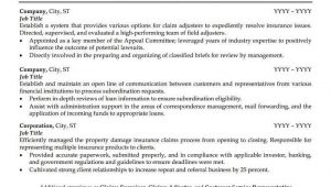 Sample Resume for Experienced Insurance Professional Insurance Agent Resume Sample