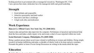 Sample Resume for Government Job In India Template for Professional Resume Job Resume Examples, Resume …