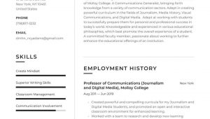 Sample Resume for Higher Education Position College Professor Resume Examples & Writing Tips 2021 (free Guide)