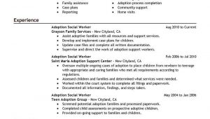 Sample Resume for Home Support Worker Human Service Worker Sample Resume Executive Summary Doc Services …