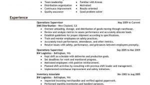 Sample Resume for It Director Position Sample Resume for Management Position [download] – Free …