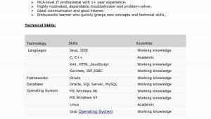 Sample Resume for Java Developer 7 Year Experience 7 Years Experience Resume format – Resume format Resume Writing …