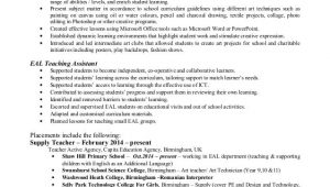 Sample Resume for Maths Teachers In India Write My Research Paper for Me Mathematics Teacher