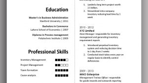 Sample Resume for One Long Term Job Simple yet Elegant Cv Template to Get the Job Done – Free Download …