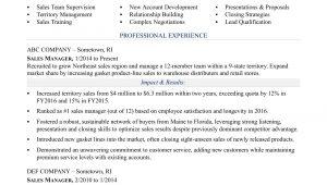 Sample Resume for Sales and Marketing Job Sales Manager Resume Sample Monster.com