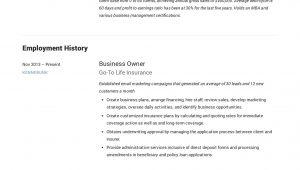 Sample Resume for Self Employed Business Owner Small Business Owner Resume Guide  19 Examples Pdf 2020