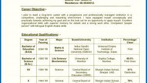 Sample Resume for Teachers In India Resume Of A Teacher India Teachers Resume format India