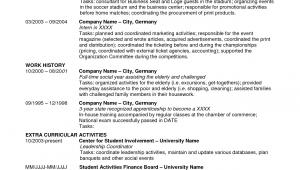 Sample Resume for Us Visa Application Good Us Visa Resume Template Addictips