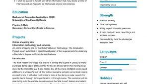 Sample Resume Objective for Information Technology Information Technology Student Resume 2021 Writing Tips …