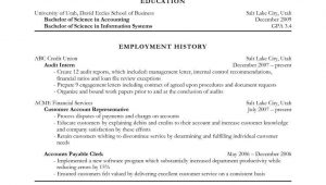 Sample Resume Objective Statements for Accounting Government Resume Objective Statement Examples Strong Objectives …