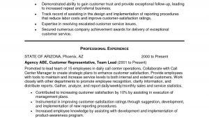 Sample Resume Summary Statement for Customer Service New Customer Service Resume Summary Examples – Resume Template …