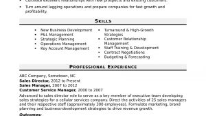Sample Skills and Abilities for Management Resume Sales Director Resume Sample Monster.com