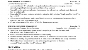 Sample Summary for Resume for Customer Service Customer Service Resume Sample Resume Panion