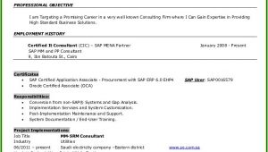 Sap Mm End User Resume Sample Sap Pp End User Resume Resume Resume Examples 1zv8rek93x
