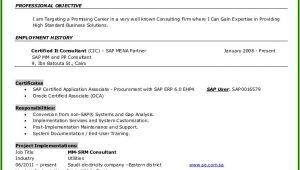 Sap Pp End User Resume Sample Sap Pp End User Resume Resume Resume Examples 1zv8rek93x